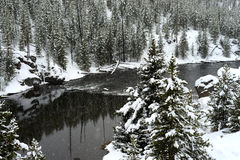 Neige Madison River d'hiver de Yellowstone Images libres de droits