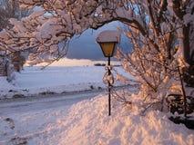 Neige magique d'horizontal de l'hiver sur une zone Photographie stock libre de droits