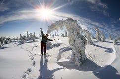 Neige profonde après une tempête de neige Photo stock