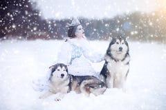 Neige-reine Fille de conte de fées avec les chiens de traîneau ou le Malamute Photo stock