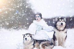 Neige-reine Fille de conte de fées avec les chiens de traîneau ou le Malamute Image stock