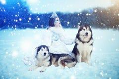 Neige-reine Fille de conte de fées avec les chiens de traîneau ou le Malamute photographie stock