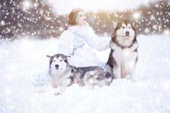 Neige-reine Fille de conte de fées avec les chiens de traîneau ou le Malamute Beaux chiens de witn de reine de neige Noël Images stock