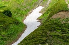Neige sur l'herbe dans les montagnes Photo libre de droits