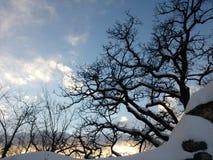neige sur le vieux mur Images stock