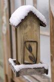 Neige sur un câble d'alimentation vide d'oiseau Photos stock