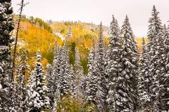 Neige tôt d'automne sur le passage de garde images stock