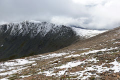 Neige tombée fraîche dans Rocky Mountains Image stock