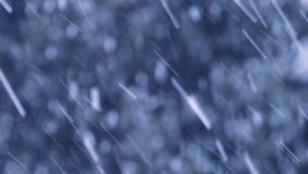 Neige tombant dans l'horaire d'hiver banque de vidéos