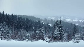 Neige tombant dans la forêt banque de vidéos
