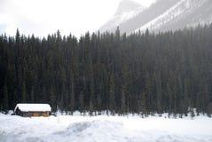 Neige tombant dans la forêt Photos libres de droits