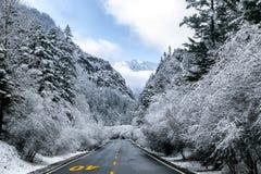 Neige tout en voyageant Image libre de droits