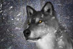Neige Wolf Wildlife Illustration d'hiver Photo libre de droits