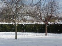 Neigez en parc dans Kent, Angleterre Photographie stock libre de droits