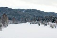 Neigez sur le terrain de golf en hiver, fond de forêt, l'espace de copie Images stock
