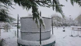 Neigez sur un trempoline dans le jardin arrière avec les branches surplombantes Photo stock
