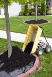 Neighborhood Beautification. Starts with a mulching operation around the tree trunks Royalty Free Stock Photography
