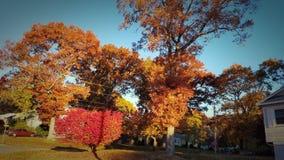 Neighborhood in Fall season stock image