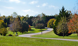 Neighborhood in Fall Royalty Free Stock Image