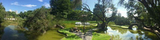 Neighborhood Garden Recreational Park Singapore. Morning walk at Toa Payoh town park, Singapore. Surprisingly a sunny day makes it looks such a beautiful park royalty free stock image