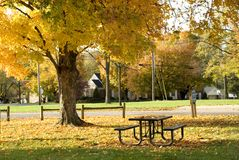 Neighborhood Park in Autumn Stock Photos