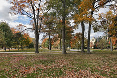 Neighborhood scene with fall colors Stock Photos