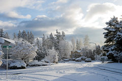 Neighborhood after a snow fall Royalty Free Stock Image