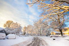 Neighborhood Street in Snow Royalty Free Stock Photography