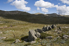 Neighbour of Mount Kosciuszko. Austaralia. Royalty Free Stock Photography