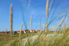 Neighbourhood of houses through the grass royalty free stock photography