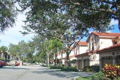 Neightborhood Townhomes Tree-Lined Street Royalty Free Stock Photo