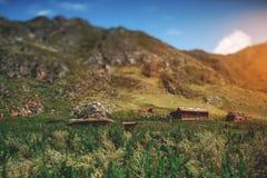 Neigung-Schiebeansicht von Altai-Bergen, Kabinen, gebürtige Gräser Lizenzfreie Stockfotos