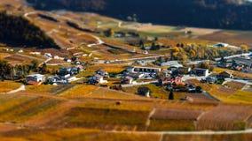 Neigung-Schiebevogelperspektive von herbstlichen Weinbergen in der Schweiz Stockfoto