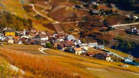 Neigung-Schiebevogelperspektive von herbstlichen Weinbergen in der Schweiz Lizenzfreies Stockbild