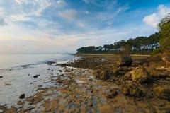 Neil Island Landscape Andaman Rocky Coast Stock Images