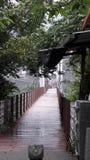 Neiwanopschorting bridge Stock Afbeelding