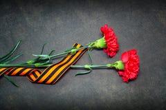 Nejlikablommor och George Ribbon Fotografering för Bildbyråer