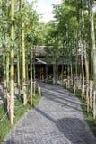 Nekoemon咖啡馆的清迈泰国日本竹庭院 库存图片
