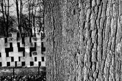 Nekropol Gdansk Zaspa, Polen Konstnärlig blick i svart och whit Fotografering för Bildbyråer