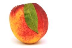 nektarin arkivfoton