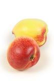 nektarin Royaltyfria Bilder