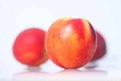 nektarin arkivbild