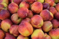 Nektarinen-Frucht-Hintergrund Stockbild