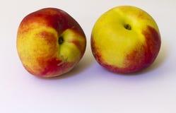 nektariner Fotografering för Bildbyråer