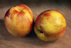 nektariner två Fotografering för Bildbyråer