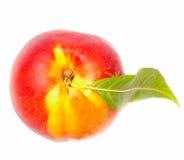 Nektarinfrukt Arkivfoto