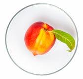 Nektarinfrukt Arkivfoton