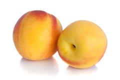 nektaryny dwa Obrazy Stock