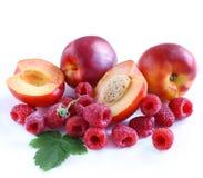 nektaryny malinowe Zdjęcie Stock