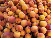 Nektaryny owoc Obrazy Stock